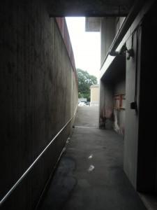 CIMG3144
