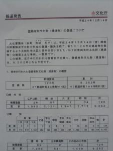 CIMG4501