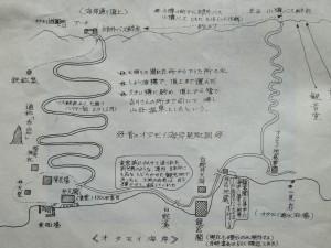 IMG_1995